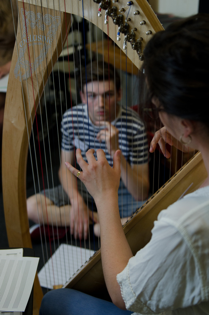Celtic harp taster session // August 2014 // ©Martin Wess